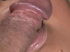 Check out Free Adult Porn free porn tube!